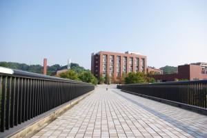 金沢大学 橋