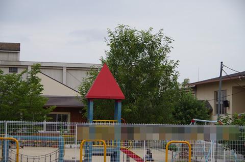 IMGP1890
